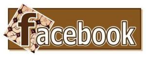 FB Batik